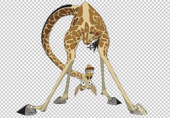 Клипарт жираф, для Фотошоп в PSD и PNG, без фона