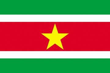 Клипарт флаг Суринама, для Фотошоп в PSD и PNG, без фона