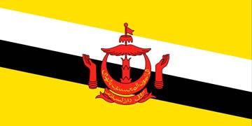 Клипарт флаг Брунея, для Фотошоп в PSD и PNG, без фона