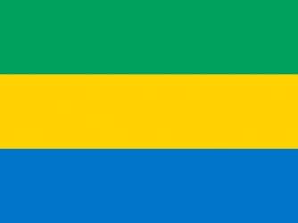 Клипарт флаг Габона, для Фотошоп в PSD и PNG, без фона