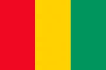 Клипарт флаг Гвинеи, для Фотошопа в PSD и PNG, без фона