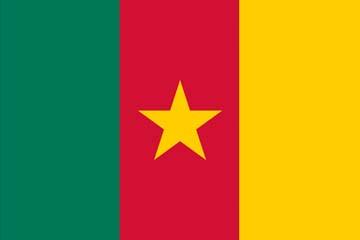 Клипарт флаг Камеруна, для Фотошоп в PSD и PNG, без фона