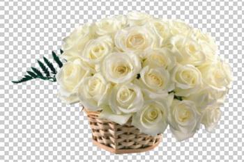 Клипарт цветы — белые розы в корзине, для Фотошоп в PSD и PNG, без фона