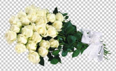 Клипарт цветы — белые розы свадебный букет, для Фотошоп в PSD и PNG, без фона