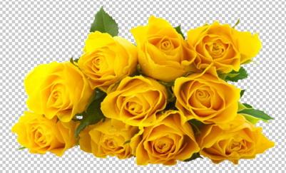 Клипарт цветы — букет желтых роз, для Фотошоп в PSD и PNG, без фона