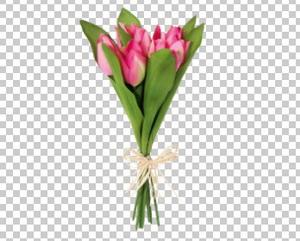 Клипарт цветы — букет темно-розовых тюльпанов, для Фотошоп в PSD и PNG, без фона