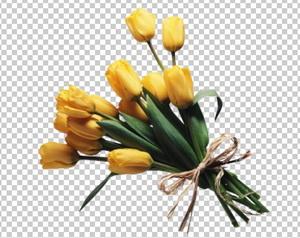 Клипарт цветы — букет желтых тюльпанов, для Фотошоп в PSD и PNG, без фона