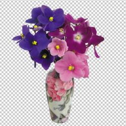 Клипарт фиалки в вазе, для Фотошоп в PSD и PNG, без фона