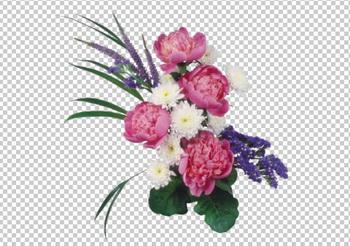 Клипарт букет пионов (розовые и белые), для Фотошоп в PSD и PNG, без фона
