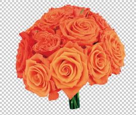 Клипарт цветок — букет оранжевых роз, для Фотошоп в PSD и PNG, без фона