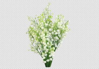 Клипарт пучок ландышей (букет), цветы, фотошоп, PSD PNG