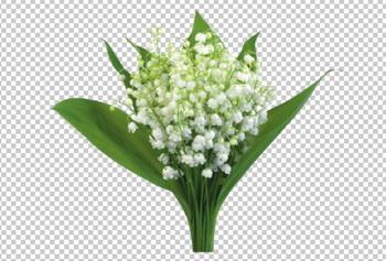 Клипарт ландыши серебристые (букет с листьями), для Фотошоп в PSD и PNG, без фона