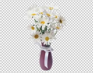 Клипарт ромашки в вазе, для Фотошоп в PSD и PNG, без фона