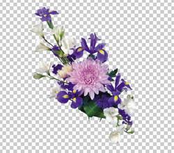Клипарт ирисы хризантемы букет, для Фотошоп в PSD и PNG, без фона