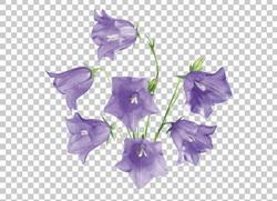 Клипарт колокольчики, для Фотошоп в PSD и PNG, без фона