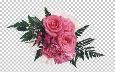 Клипарт цветы — розовые розы, для Фотошоп в PSD и PNG, без фона