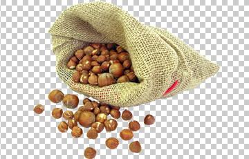 Клипарт фундук в мешке, для Фотошоп в PSD и PNG, без фона