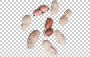 Клипарт арахис, для Фотошоп в PSD и PNG, без фона