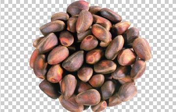 Клипарт кедровые орехи, для Фотошоп в PSD и PNG, без фона