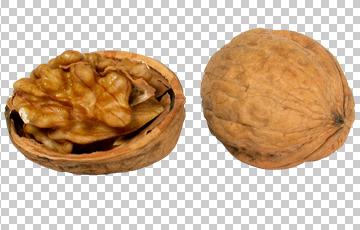 Клипарт грецкий орех, для Фотошоп в PSD и PNG, без фона