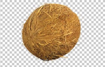 Клипарт кокос, для Фотошоп в PSD и PNG, без фона