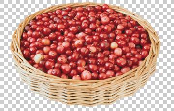 Клипарт клюква в корзине, для Фотошоп в PSD и PNG, без фона