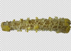 Клипарт кукуруза которую съели, для Photoshop бесплатно в PSD и PNG, без фона