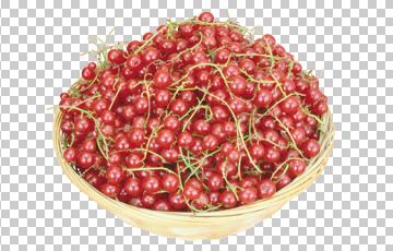 Клипарт красная смородина в корзине, для Фотошоп в PSD и PNG, без фона