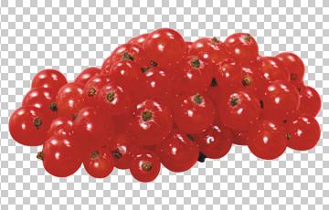 Клипарт красная смородина, для Фотошоп в PSD и PNG, без фона