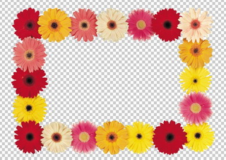 Цветочная рамка для фото, в PNG и PSD, без фона