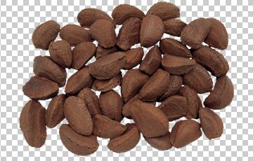 Клипарт зерна какао, для Фотошоп в PSD и PNG, без фона