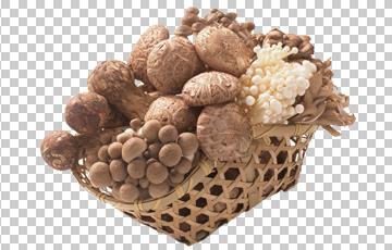 Клипарт корзина с грибами, для фотошоп, PSD и PNG, без фона