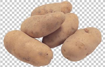 Клипарт картофель, для Фотошоп в PSD и PNG, без фона