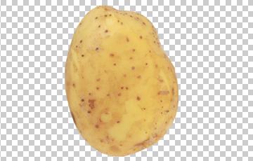 Клипарт картошка, для Фотошоп в PSD и PNG, без фона