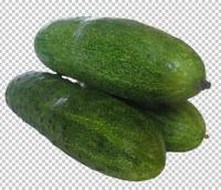 Клипарт огурцы горкой зеленый, фотошоп, PSD PNG